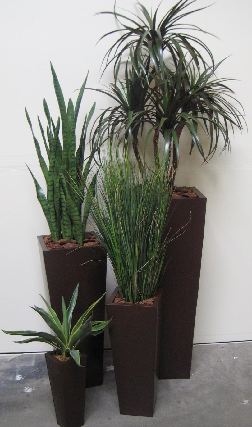 Plant set of 4 grouping-1 · Home Decorating Resources   Home ...